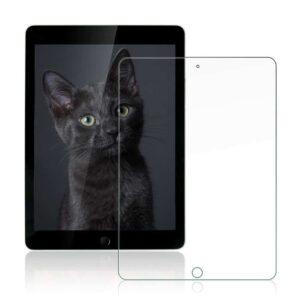 "iPad 9.7"" 2018 Panzerglas als Displayschutz"